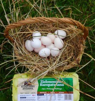 Jaja od zielononóżki kuropatwianej