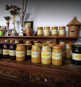Grupowa degustacja produktów pszczelich połączona z pokazem miodobrania
