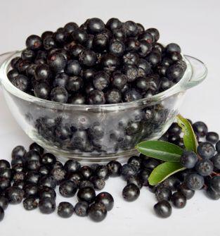 Aronia czarnoowocowa, owoce z produkcji ekologicznej